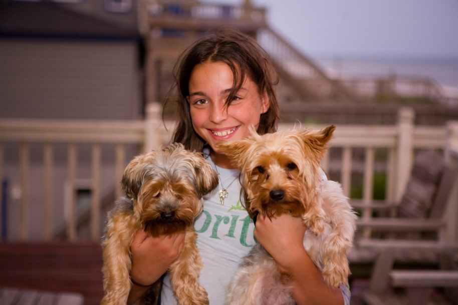 pets-kids-dogs-animal-161462.jpeg
